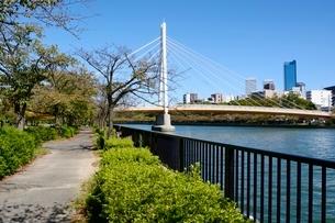 大阪,川崎橋と桜ノ宮方面街並みの写真素材 [FYI01549078]