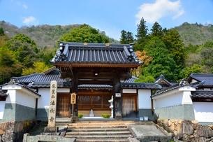 竹田城 寺町通り 法樹寺の写真素材 [FYI01549302]