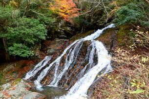 落ち葉とそうめん滝の写真素材 [FYI01549318]