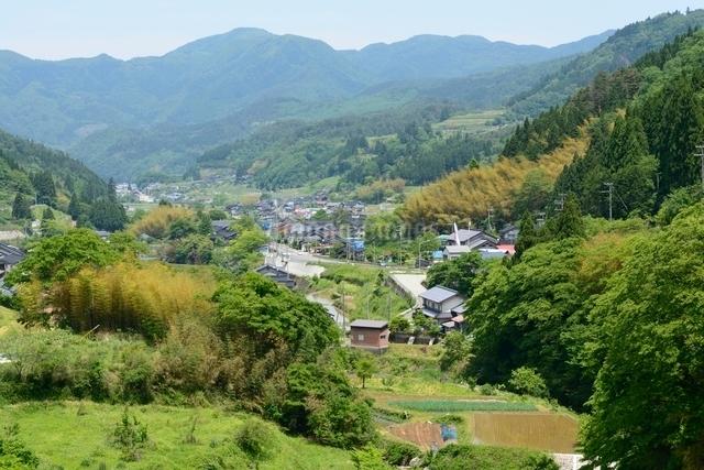 新緑 山間の集落の写真素材 [FYI01549358]