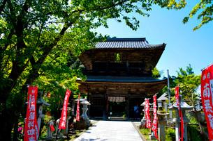 新緑 城崎温泉 温泉寺山門の写真素材 [FYI01549662]