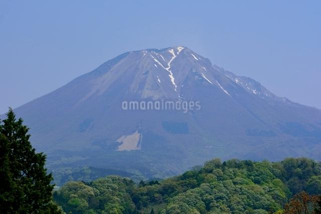 とっとり花回廊からの大山の写真素材 [FYI01549685]