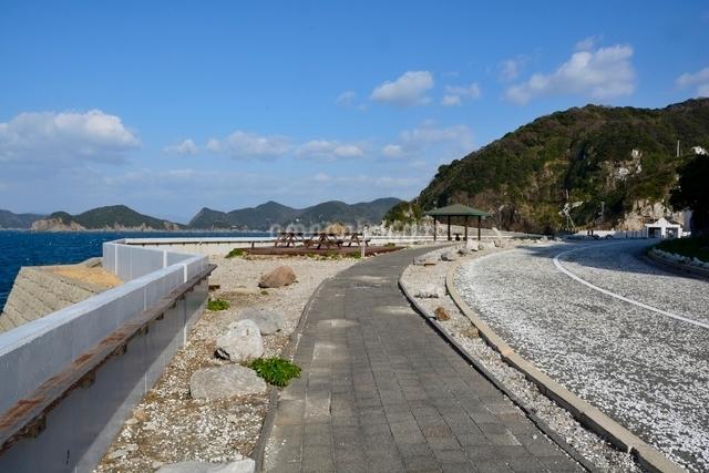 和歌山,白崎海洋公園の写真素材 [FYI01549822]