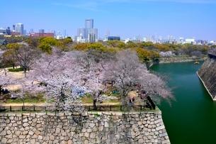 桜,大阪城西の丸とビル街の写真素材 [FYI01550245]