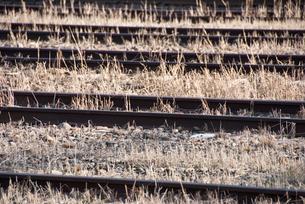古びた線路の写真素材 [FYI01550318]