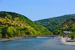新緑 宇治橋から宇治川の上流を見るの写真素材 [FYI01550369]