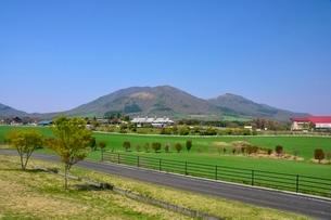 新緑,蒜山高原の写真素材 [FYI01550908]