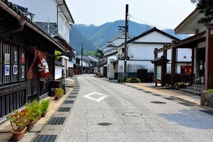 城下町,勝山保存地区の写真素材 [FYI01551001]