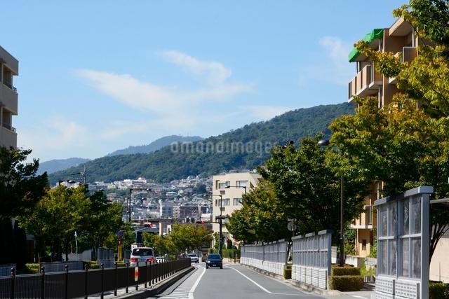 山手幹線芦屋付近から神戸の街並みの写真素材 [FYI01551021]