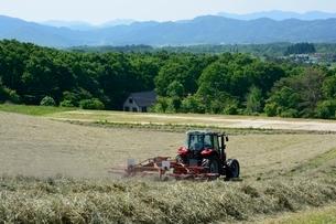 新緑,蒜山高原牧草作業の写真素材 [FYI01551065]