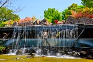 とっとり花回廊,ミニの滝の写真素材 [FYI01551318]