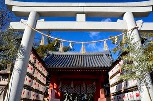 西宮神社,初詣の写真素材 [FYI01551349]