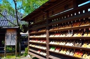 新緑 城崎温泉外湯廻りの写真素材 [FYI01551415]