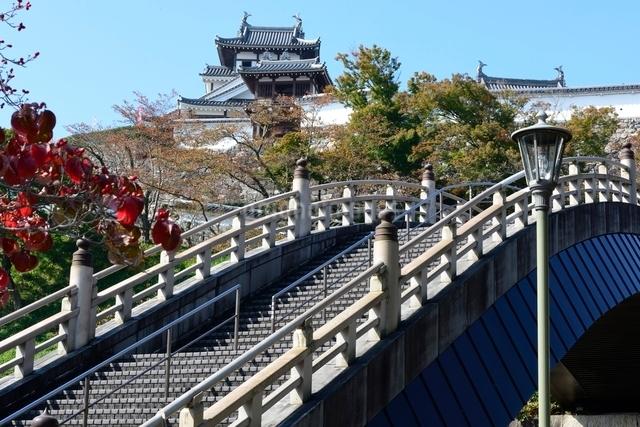 昇龍橋から福知山城見るの写真素材 [FYI01551448]