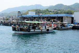 淡路 佐野漁港へ漁船が帰るの写真素材 [FYI01551571]
