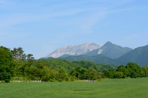 新緑,蒜山高原から大山を見るの写真素材 [FYI01551589]