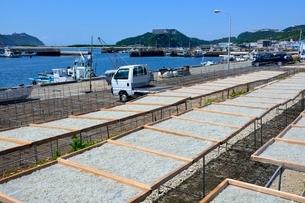 福良漁港でシラスちりめんの天日干しの写真素材 [FYI01551626]