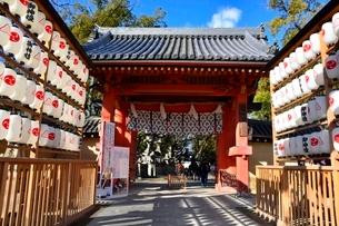 西宮神社,初詣の写真素材 [FYI01551648]