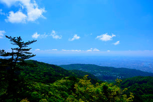 新緑 六甲山頂からの風景の写真素材 [FYI01551701]
