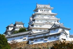 姫路,紅葉,姫路城天守閣の写真素材 [FYI01551930]