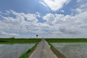 青空と道の写真素材 [FYI01552413]