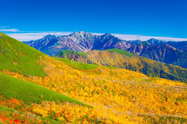 乗鞍岳の紅葉 穂高連峰を乗鞍岳より望むの写真素材 [FYI01553540]