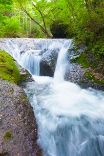 本沢渓谷 くまぎの滝の写真素材 [FYI01553811]