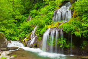 吐竜の滝の写真素材 [FYI01554269]