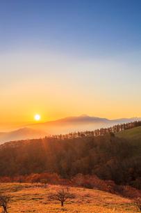 三峰山からのぞむ蓼科山と日の出の写真素材 [FYI01554412]