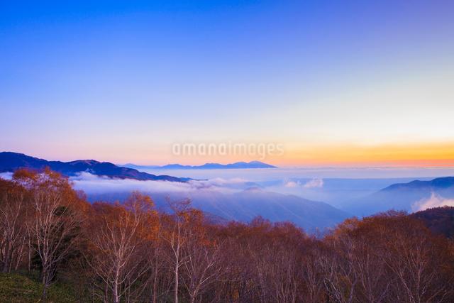 三峰山からのぞむ浅間山と雲海の写真素材 [FYI01554510]
