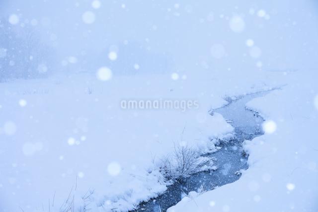 姫川と雪の写真素材 [FYI01554890]