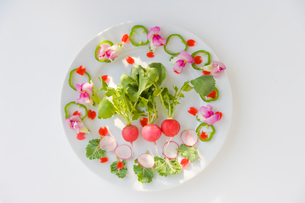 花のサラダの写真素材 [FYI01555416]