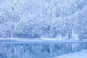 中綱湖と雪の写真素材 [FYI01555663]