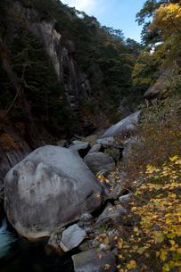 昇仙峡の紅葉の写真素材 [FYI01555718]