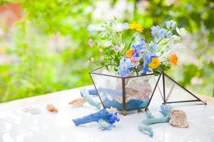 ガラスの器に花アレンジの写真素材 [FYI01556420]