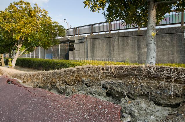 高洲地区 大震災の液状化災害で壊れた道路の写真素材 [FYI01556749]