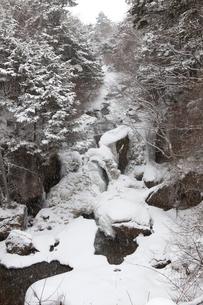 龍頭の滝氷瀑の写真素材 [FYI01556770]
