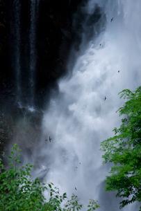 華厳の滝の写真素材 [FYI01556993]
