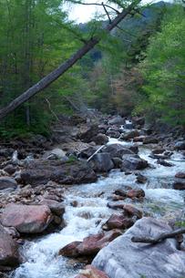 金峰山登山中に見た千曲川の源流の写真素材 [FYI01557027]