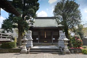 浅間神社 新撰組を包囲した新政府軍が仮本陣を敷いたの写真素材 [FYI01557222]