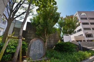 太宰治が植えた夾竹桃がある市民文化ホール・中央公民館の写真素材 [FYI01557338]