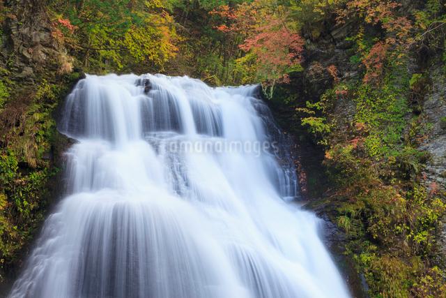 番所大滝の写真素材 [FYI01557348]