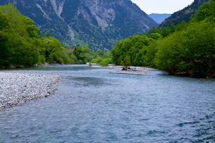 上高地の新緑と梓川の写真素材 [FYI01557488]