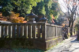 大河内松平家廟所の紅葉の写真素材 [FYI01557586]