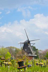 アンデルセン公園 デンマーク職人が手掛けた風車の写真素材 [FYI01557735]