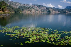 ポカラ ベグナス湖の写真素材 [FYI01557959]