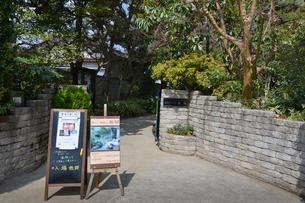 杜のアトリエ黎明 醸造家「秋平」の屋敷跡庭園の入り口の写真素材 [FYI01558115]