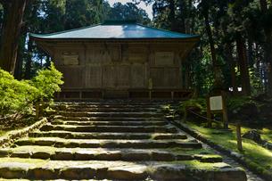 北陸の苔寺と呼ばれる平泉寺白山神社の写真素材 [FYI01558141]