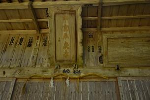 北陸の苔寺と呼ばれる平泉寺白山神社の写真素材 [FYI01558203]