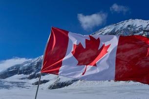 コロンビア大氷原とカナダ国旗の写真素材 [FYI01558218]